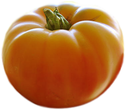 Happy Boy Farms Tomato